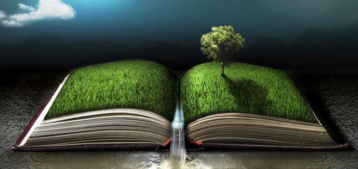 Bild Nachhaltigkeit